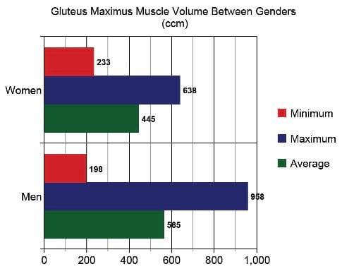 ejercicios glúteos, genética glúteos