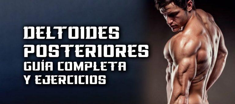 Deltoides Posteriores – Guía completa y ejercicios
