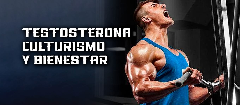 Testosterona Baja Culturismo Natural Bienestar