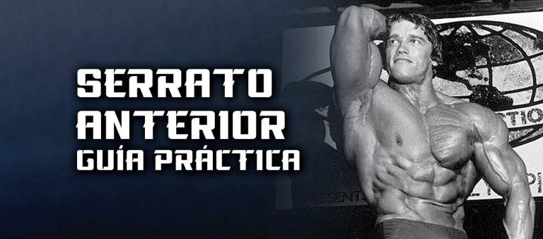 Serrato Anterior – Guía Funciones y Ejercicios