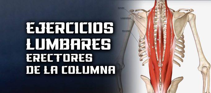 ejercicios lumbares erectores de la columna